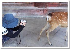 写真教室-実践